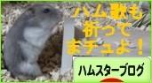 DSCF0956.jpg